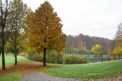 De herfstlandschap royalty-vrije stock foto's