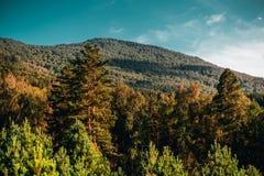 De herfstlandschap in de bergen van Altay Stock Foto