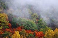 De herfstlandschap en wolk en mist Stock Afbeelding