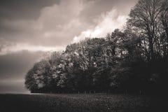 De herfstlandschap in het Belgische platteland Stock Foto