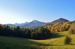 De herfstlandschap in het nationale park van Pieniny, Slowakije royalty-vrije stock afbeeldingen