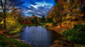 De herfstlandschap in het stadspark stock video