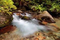 De herfstlandschap, kleurrijke bladeren op bomen, ochtend bij rivier Autumn Stream E royalty-vrije stock foto's