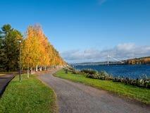 De herfstlandschap met brug Stock Afbeelding