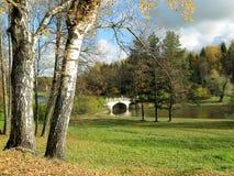 De herfstlandschap met een brug Stock Afbeelding