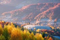 De herfstlandschap met een mooi bos in de bergen Royalty-vrije Stock Afbeelding