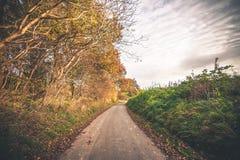 De herfstlandschap met een weg royalty-vrije stock foto