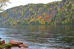 De herfstlandschap met heldere kleuren op de rivierbank stock foto