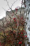 De herfstlandschap met kasteel Royalty-vrije Stock Fotografie