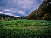 De herfstlandschap met kleurrijke bos en onweerswolken stock afbeeldingen