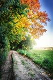 De herfstlandschap met landweg Stock Foto's