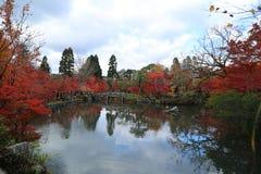 De herfstlandschap met meer en bomen stock foto
