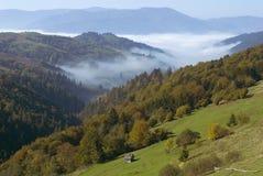 De herfstlandschap met mist Stock Fotografie