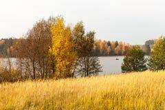 De herfstlandschap met visser Stock Fotografie