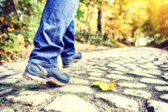 De herfstlandschap met wandelaar op bosweg royalty-vrije stock fotografie