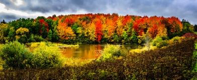 De herfstlandschap in New Brunswick, Canada royalty-vrije stock foto's