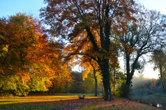 De herfstlandschap op een warme en zonnige ochtend stock foto