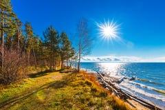 De herfstlandschap op de rivier De Ob-Rivier, Siberië, Rusland stock fotografie