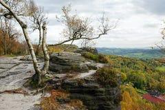 De herfstlandschap - prachtig gekleurd allen royalty-vrije stock foto