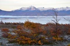 De herfstlandschap in Puerto Natales Patagonië Argentinië stock fotografie