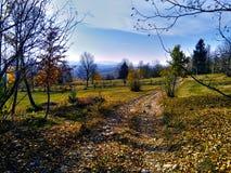 De herfstlandschap in Roemenië met gebieden en bos bij zonsondergang stock afbeelding