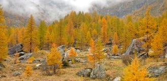 De herfstlandschap van alpen Stock Foto