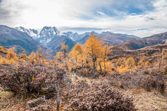 De herfstlandschap van de berg Royalty-vrije Stock Afbeelding