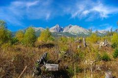 De herfstlandschap van de panoramaberg Royalty-vrije Stock Afbeeldingen