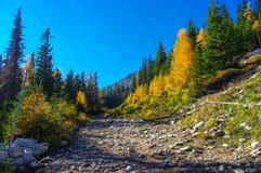 De herfstlandschap van de panoramaberg Stock Foto's