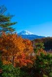 De herfstlandschap van Japan Stock Foto's