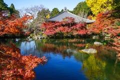 De herfstlandschap van Kyoto, Japan stock afbeelding