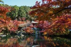 De herfstlandschap van Kyoto, Japan royalty-vrije stock afbeeldingen