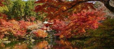 De herfstlandschap van Kyoto, Japan stock foto's