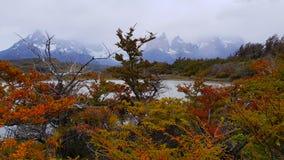 De herfstlandschap van Torres del Paine onder wolken, Chili royalty-vrije stock foto's