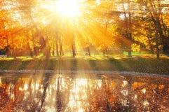 De herfstlandschap van zonnig die de herfstpark door de zonneschijn-herfst park met de herfstbomen en vijver in zacht licht wordt Royalty-vrije Stock Afbeeldingen