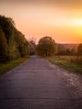 De herfstlandschap, weg door bomen en zonsondergang Royalty-vrije Stock Afbeeldingen