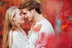 De herfstliefde, paar het kussen in dalingspark royalty-vrije stock fotografie