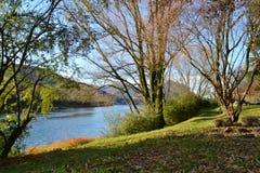 De herfstmening aan de rivier Adda dichtbij Lecco in een zonnige dag stock afbeeldingen