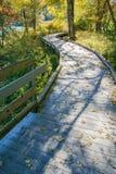 De herfstmening van de Abbott-de Meerpromenade en Schaduwen royalty-vrije stock afbeelding