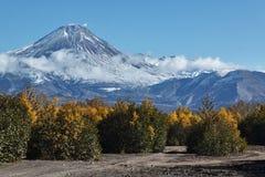 De herfstmening van actieve Avachinskiy-Vulkaan op Kamchatka, Rusland Royalty-vrije Stock Afbeelding