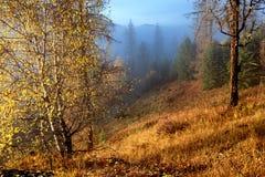 De herfstochtend in bergen Stock Afbeeldingen