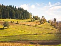 De herfstochtend bij heuvels en weiden van Radocelo-berg stock afbeeldingen