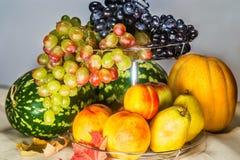De herfstoogst van vruchten Royalty-vrije Stock Afbeeldingen