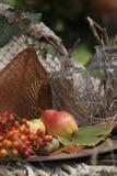De herfstopbrengst, vruchten, bessen en noten Stock Foto