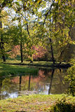 In de herfstpark Stock Foto's