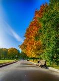 De herfstpark Royalty-vrije Stock Afbeeldingen