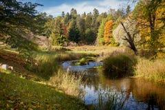 De herfstpark Royalty-vrije Stock Foto's