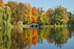 De herfstpark, de vijver - mooi de herfstlandschap Royalty-vrije Stock Foto