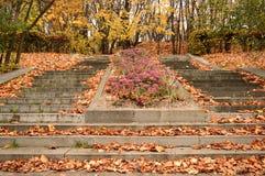 De herfstpark in Moskou Royalty-vrije Stock Afbeeldingen