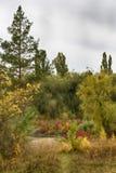 De herfstpark op een donkere dag Royalty-vrije Stock Afbeelding